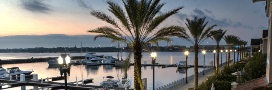 Tampa Hotels For Business
