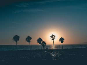 Enjoy Summer All-Year-Round At The Best Tampa Beaches